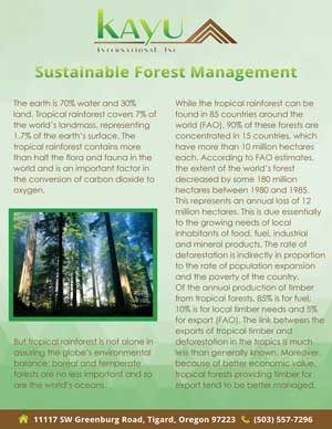 pdf image of Kayu International document on sustainable forest management