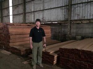 steve wood b
